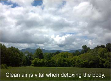 Clean air is vital when detoxing the body.