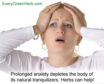 Herbs can help rid the mind of anxiety.