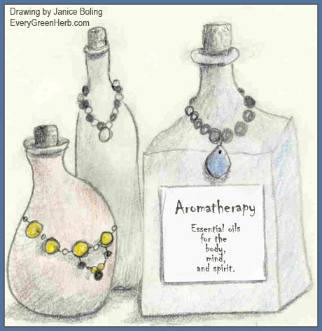 Aromatherapy and Essential oils - drawing by Janice Boling