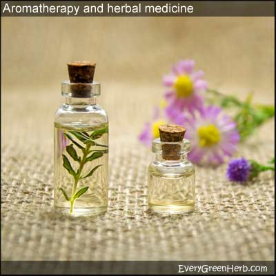 Aromatherapy and essential oils are often used in herbal medicine.