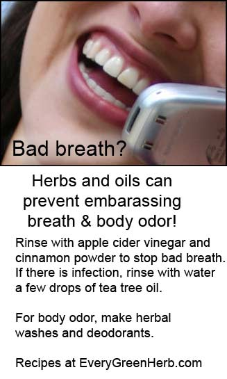 Fight bad breath with herbal remedies