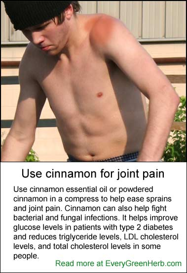 Cinnamon can help joint pain