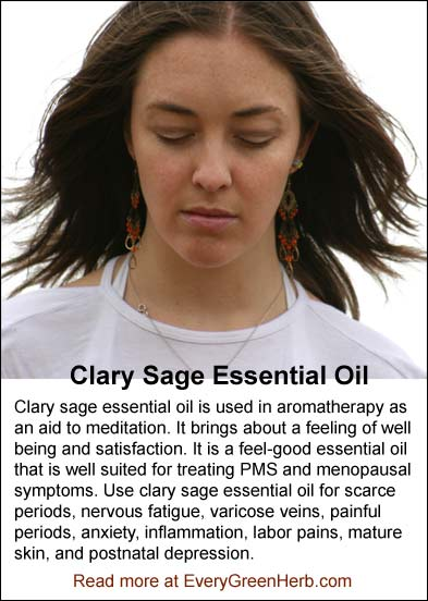 Clary Sage Essential Oil is an aid to meditation