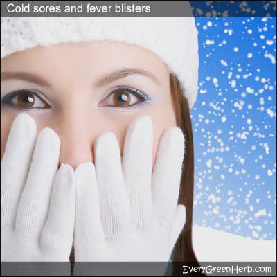 Cold sores and fever blisters most often strike women in the winter months.