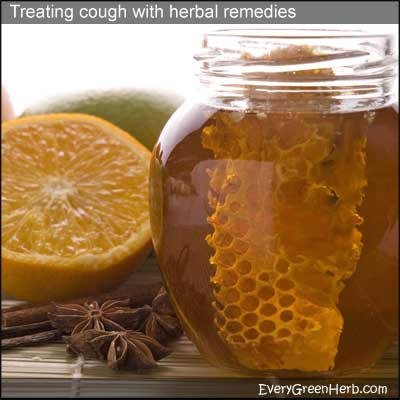 Lemon and honey are time honored home remedies for coughs.