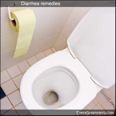 Treat diarrhea with herbs like peppermint