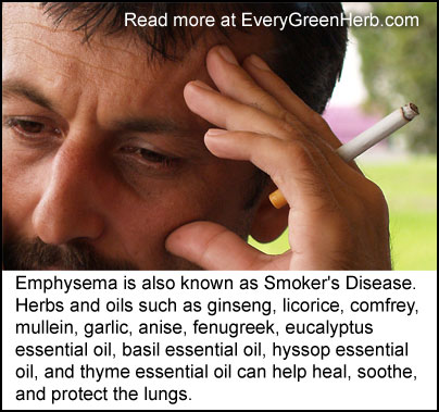 Emphysema can be treated with herbs