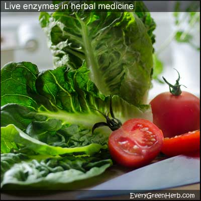 Lettuce and tomato contain live enzymes.