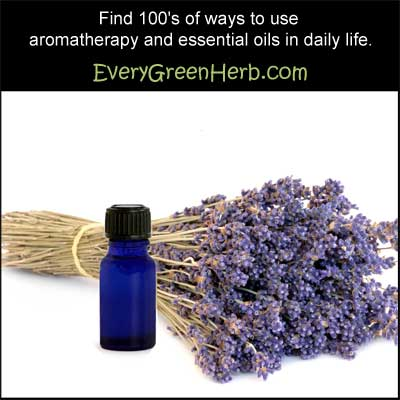 Essential oils help heal the body, mind, and spirit.