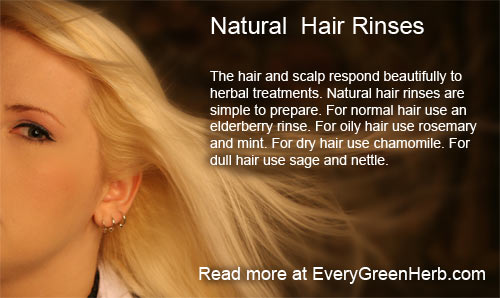 Herbal Hair Rinses