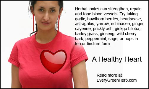 Herbs for a healthy heart