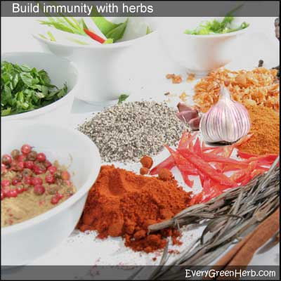 Herbs can build the immune system.