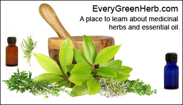 A place to learn about medicinal herbs adn essential oils