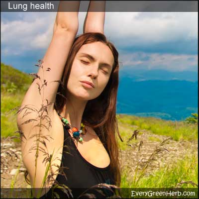 Girl breathing in fresh air with healthy lungs