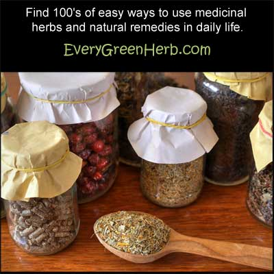 Medicinal herbs help to heal and protect the body.