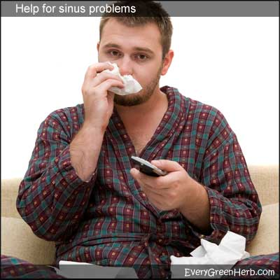 Treat sinus infection and congestion with herbs and aromatherapy