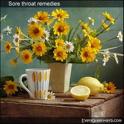 Herbal tea with lemon - treat sore throat with hot tea