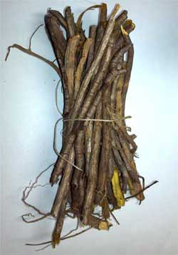 Yellowroot bundles for sale