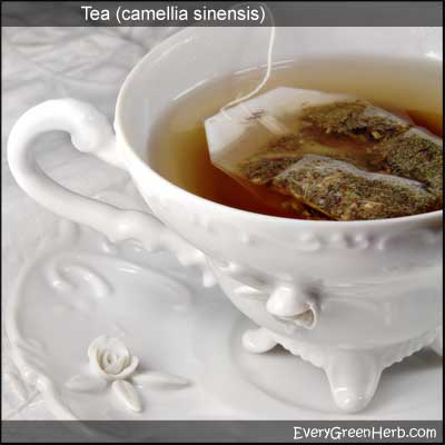 Tea is an excellent herbal remedy
