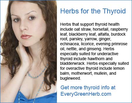 Herbs for the thyroid