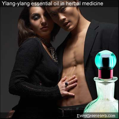 ylang ylang essential oil restores lost passion.